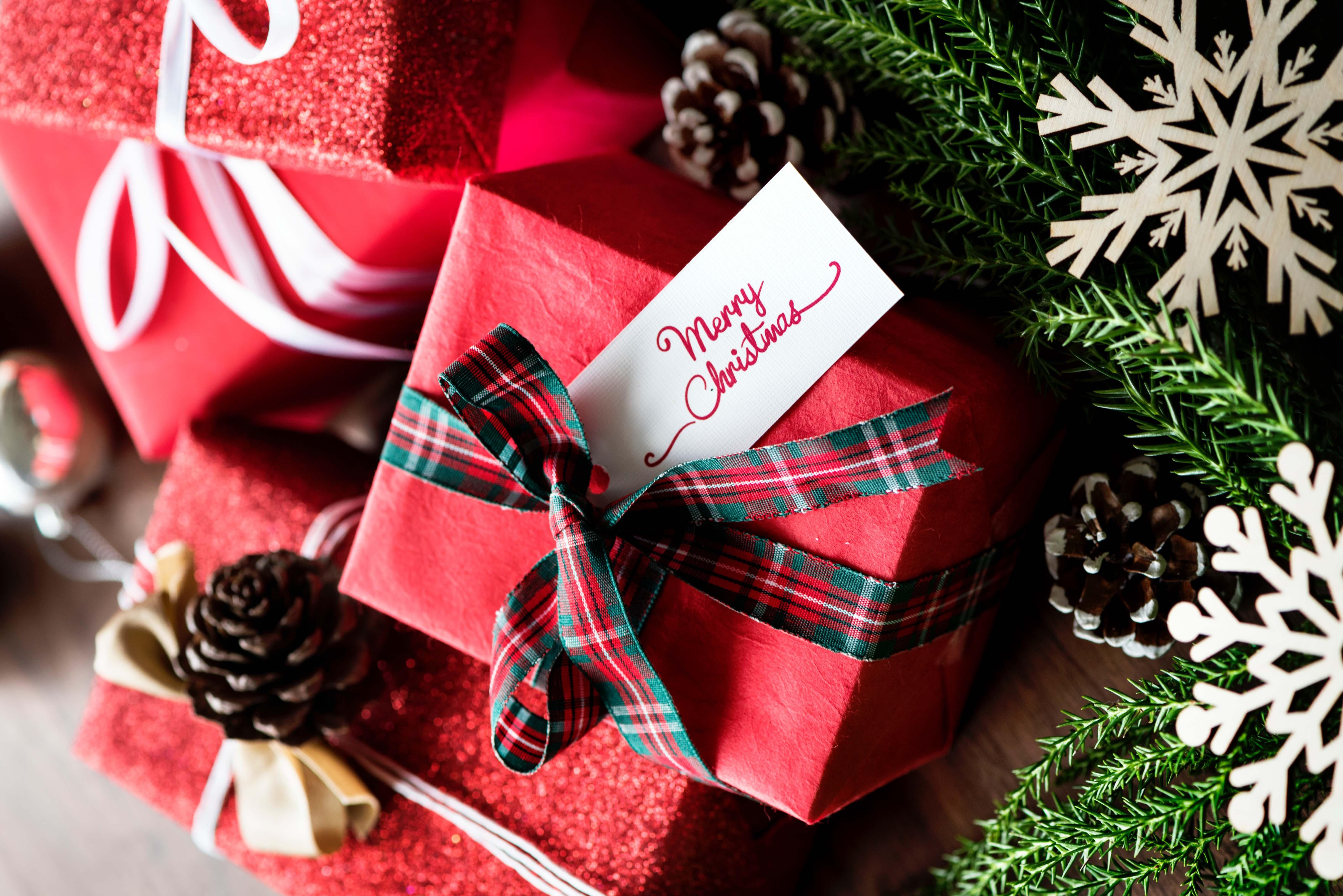 christmas photography - photojaanic-4