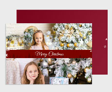 https://www.photojaanic.com/sites/all/themes/bootstrap_business/images/products/newyearcards/Pine Tree_medium_4.jpg
