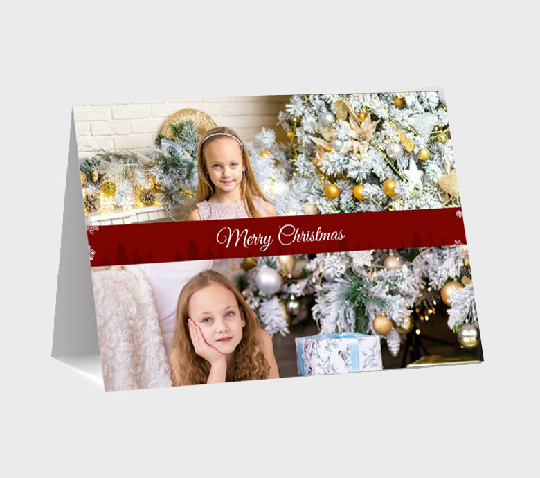 https://www.photojaanic.com/sites/all/themes/bootstrap_business/images/products/newyearcards/Pine Tree_medium_1.jpg
